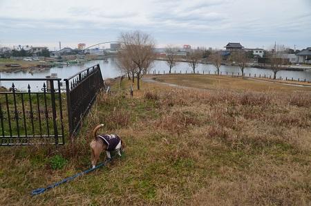 20160221横利根閘門ふれあい公園08