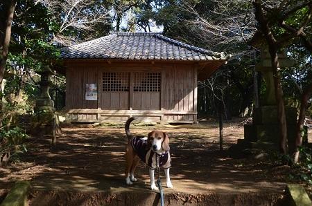20160221相賀城址16
