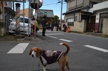 20160221行方のひなまつり 麻生編29