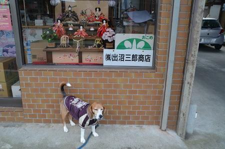 20160221行方のひなまつり 麻生編27