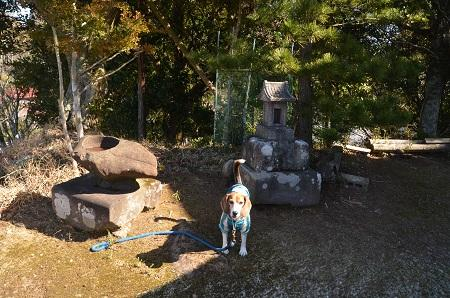 20160301富士見百景 清澄山天富神社境内07