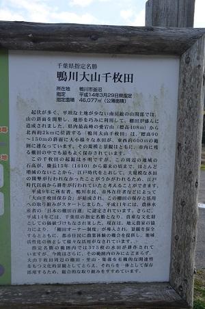 20160301大山千枚田02