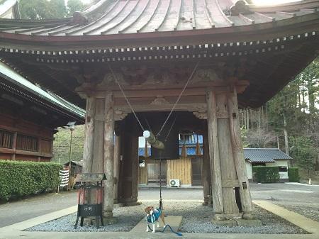 20160301大山寺11