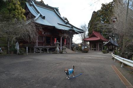 20160301大山寺09