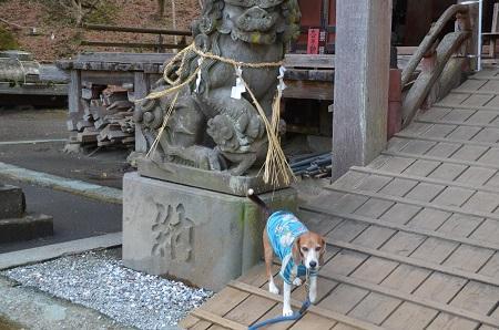 20160301大山寺08