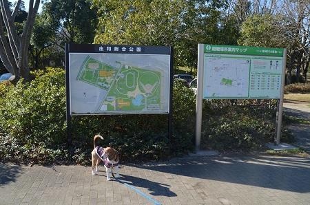 20160302庄和総合公園01