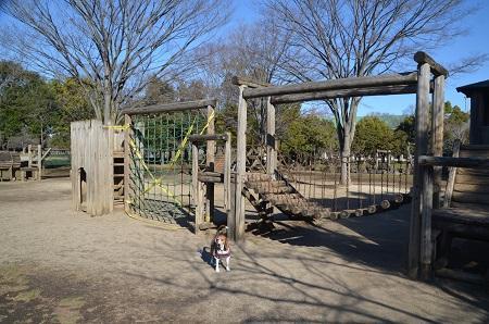20160302庄和総合公園13