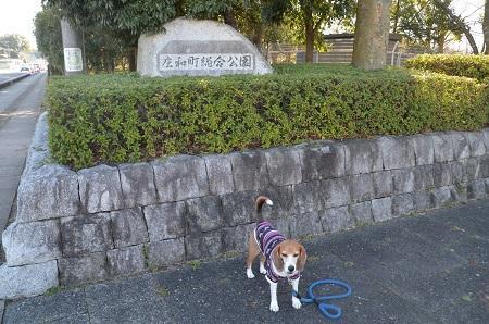 20160302庄和総合公園36