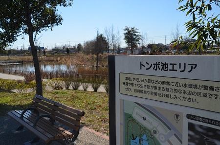 20160302まつぶせ緑の丘公園23