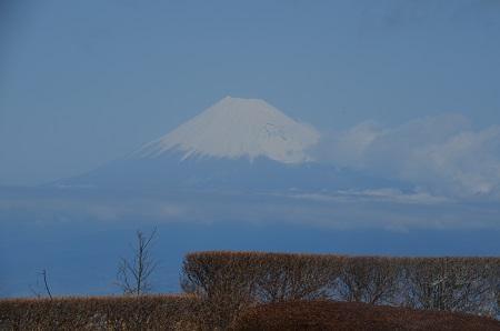 20160308だるま山05