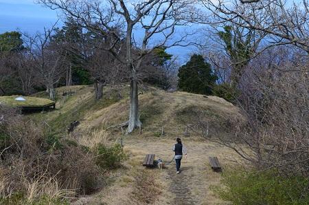 20160308煌きの丘11