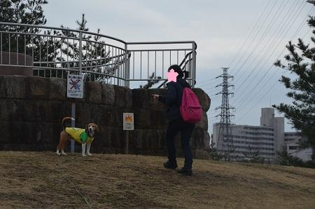 20160313上柚木公園20