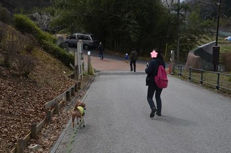 20160313殿入中央公園01