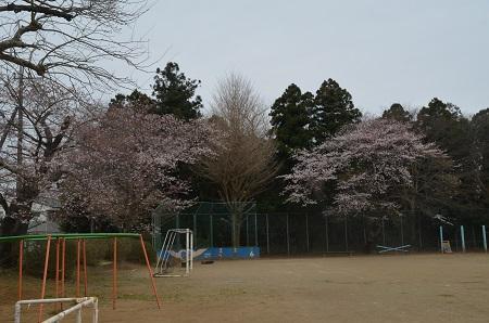 20160402長戸小学校14