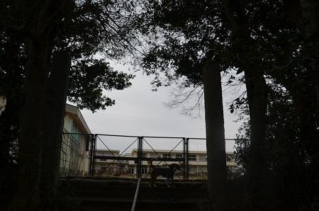 20160402長戸小学校23