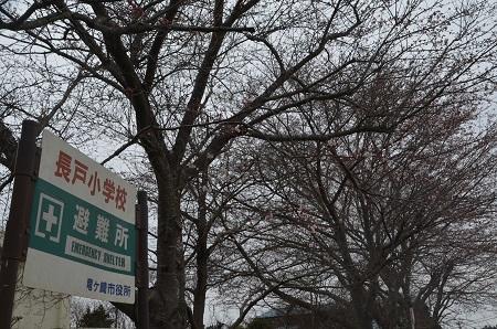 20160402長戸小学校34