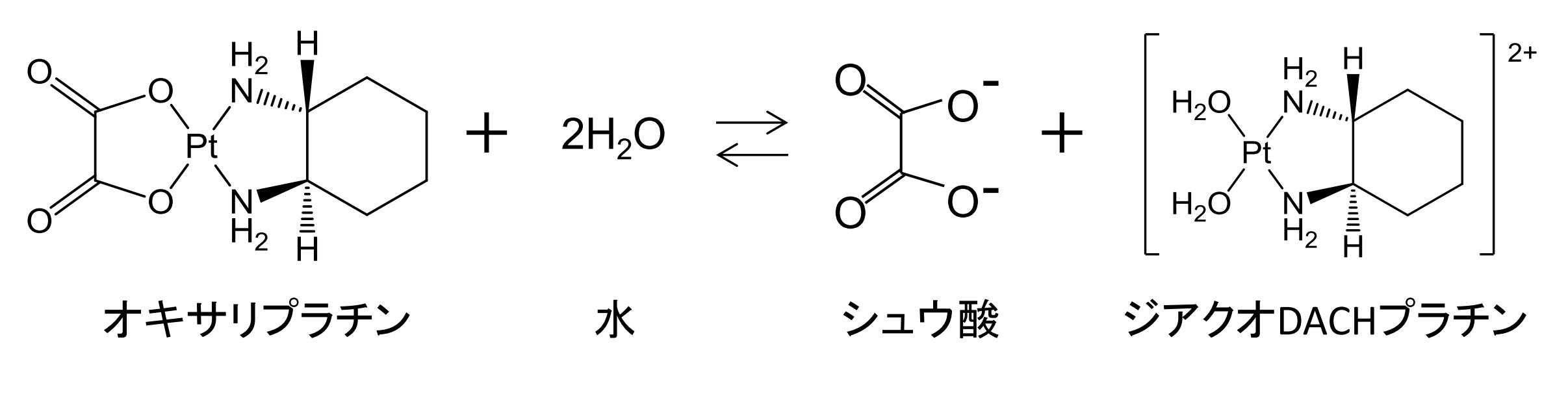 20160310_biopatentblog.jpg