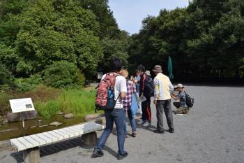 筑波植物園3