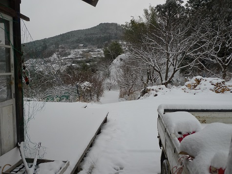 たかはら雪2