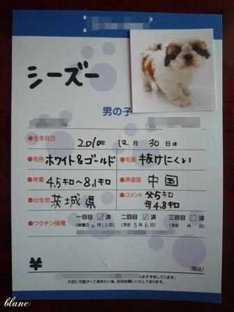 卒業証書(1)