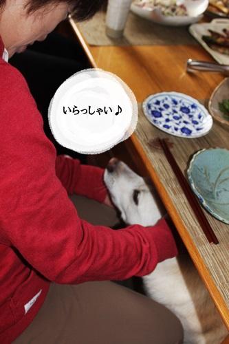 IMG_3738桜