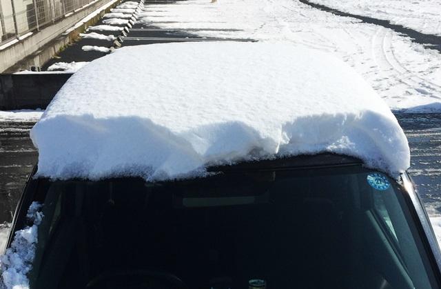 大雪の日に2