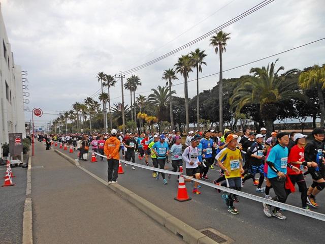 鹿児島マラソン3