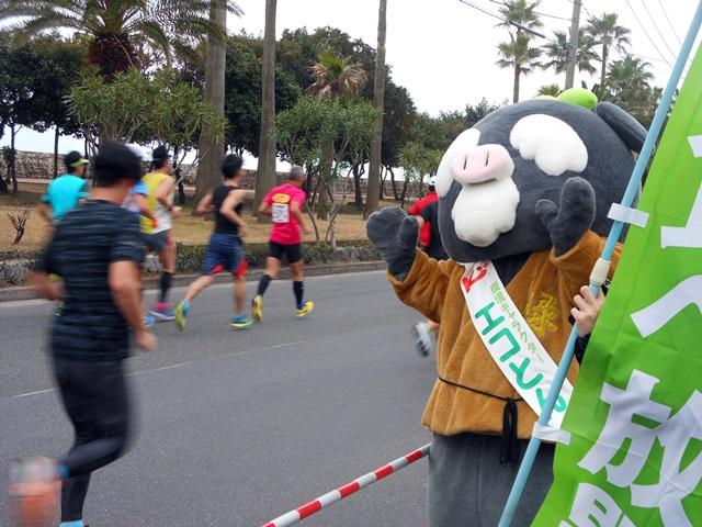 鹿児島マラソン6-1