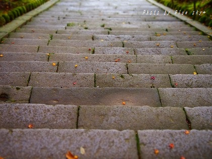 大原八幡‐石段