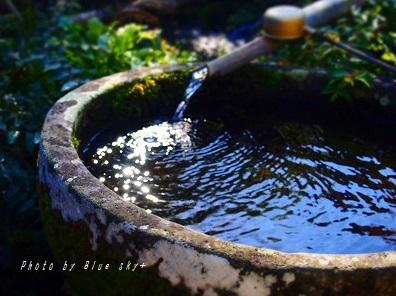 綺麗な湧き水