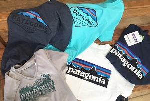 patagonia Tシャツ