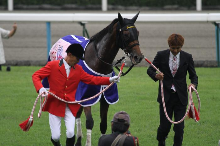 2012 ジェンティルドンナ 秋華賞