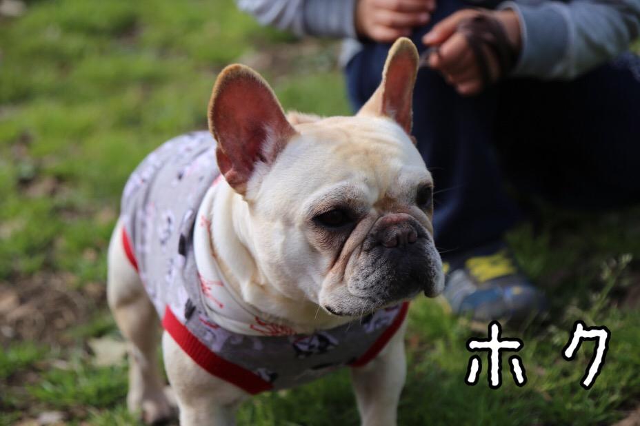 GD会 関東BBQ 11
