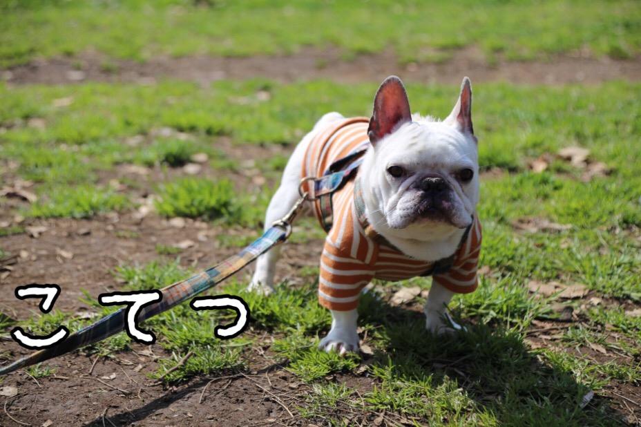 GD会 関東BBQ 19