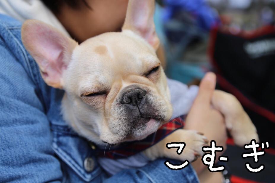 GD会 関東BBQ 21