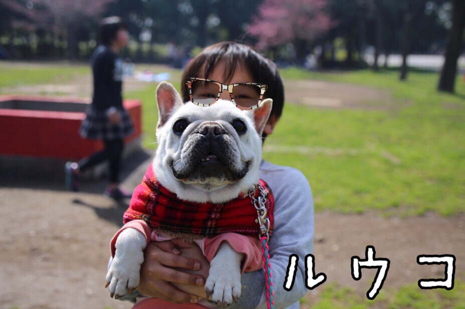 GD会 関東BBQ 22