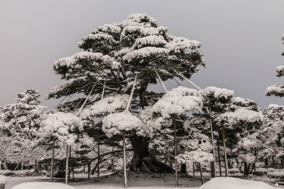 2016.02.16長町武家屋敷跡・兼六園・金沢城の雪景色10