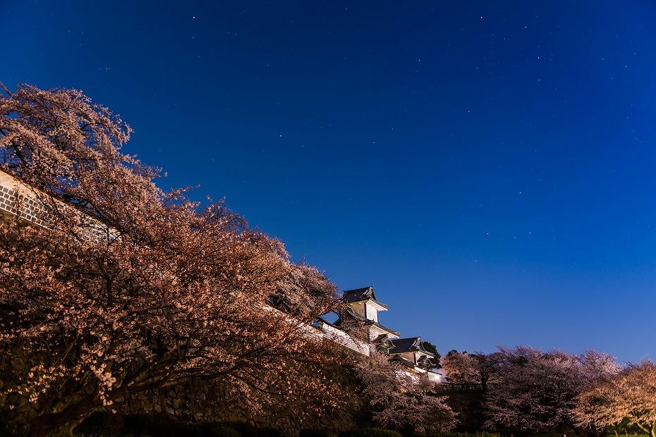 2016.04.02金沢城の桜1