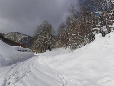ラルマナイ林道