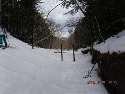 縮小2苔の洞門