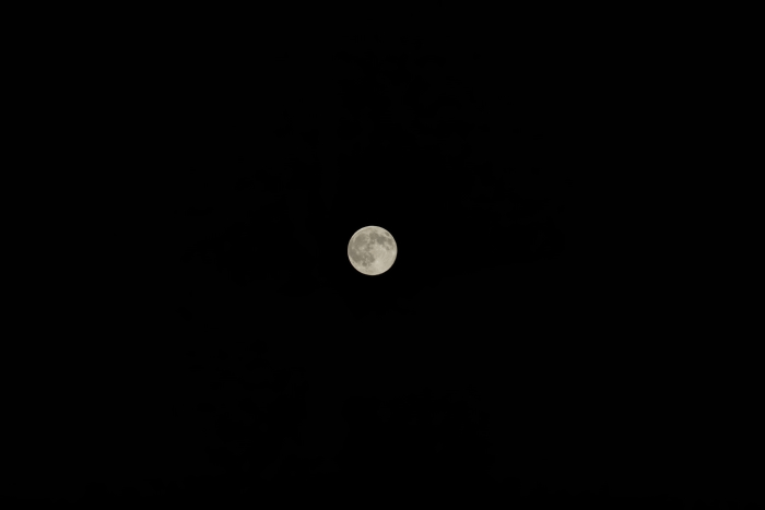 Moon Sony α7R FE24-240