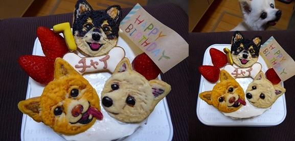 cake151213-horz.jpg