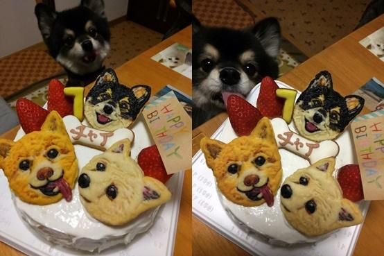 cake151213_2-horz.jpg
