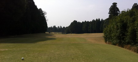 07成田の森