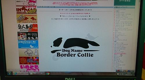 s-_20160303_145548.jpg
