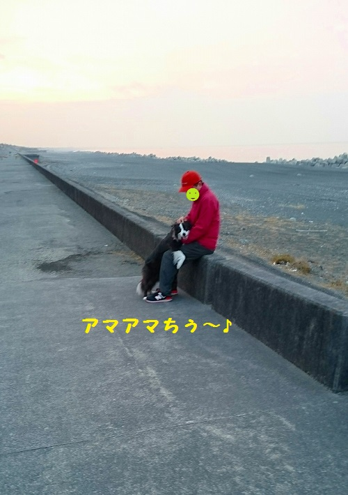 s-_20160305_194357.jpg