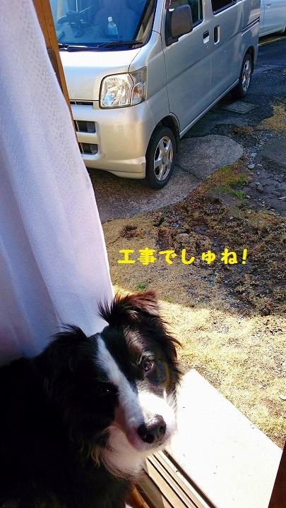 s-_20160308_200300.jpg