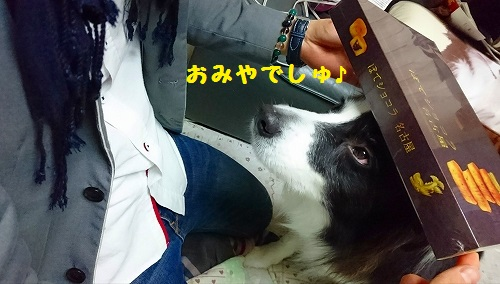 s-_20160312_182514.jpg