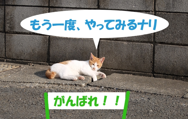 やってみるナリ 「がんばれ!!」