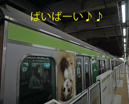20160306 (24)